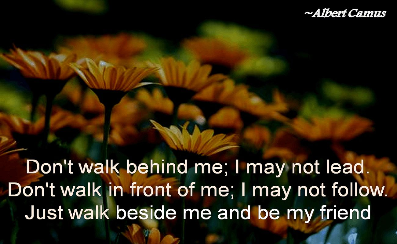 Albert Camus- Don't walk behind me; I may not lead. Don't walk in front of me; I may not follow. Just walk beside me and be my friend