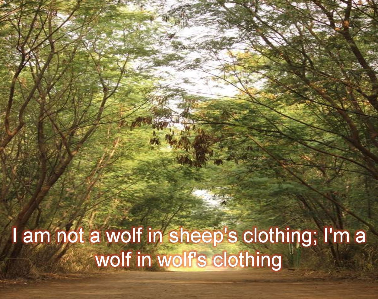 Anonymous- I am not a wolf in sheep's clothing; I'm a wolf in wolf's clothing