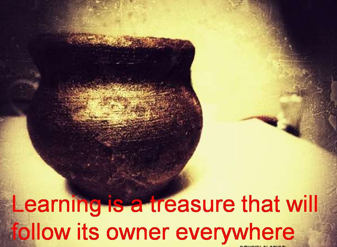 Anonymous- Learning is a treasure that will follow its owner everywhere