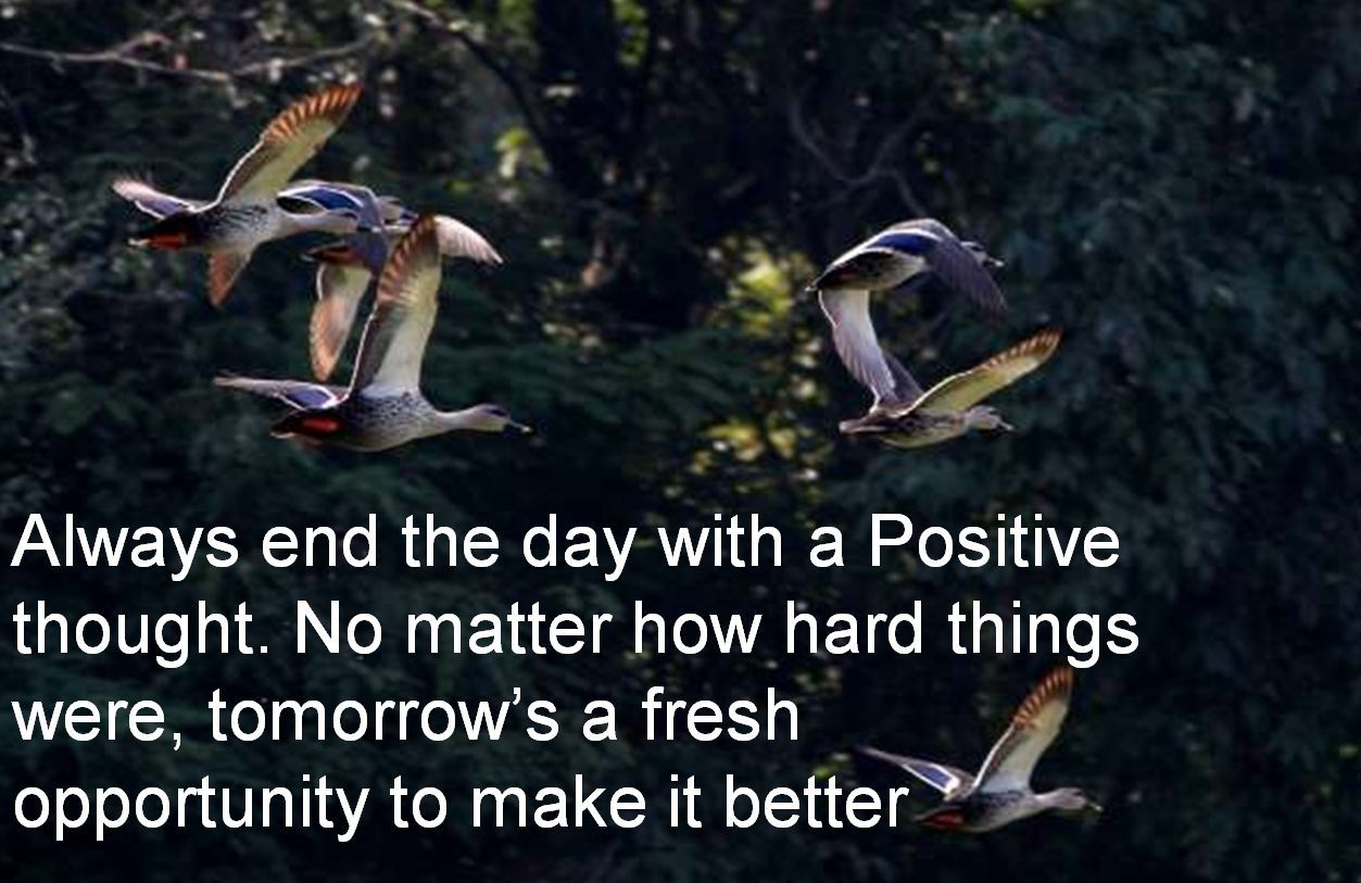 Anonymous- Always end the day with a Positive thought. No matter how hard things were, tomorrows a fresh opportunity to make it better