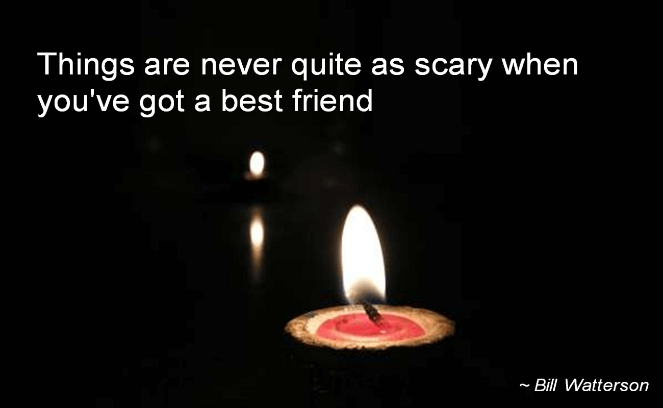 Bill Watterson- Things are never quite as scary when you've got a best friend