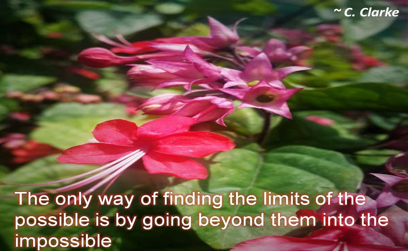C. Clarke- The only way of finding the limits of the possible is by going beyond them into the impossible