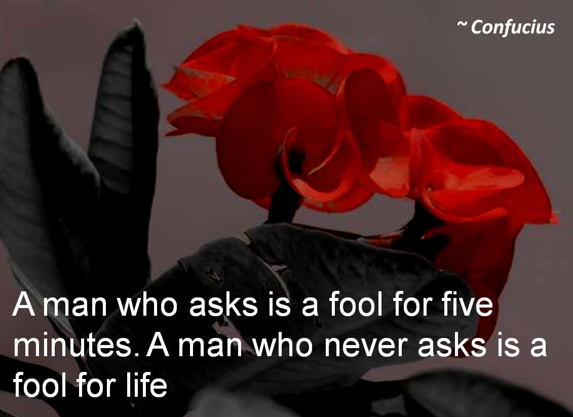 Confucius- A man who asks is a fool for five minutes. A man who never asks is a fool for life