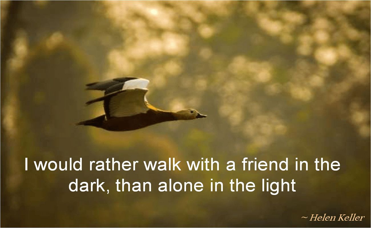 Helen Keller- I would rather walk with a friend in the dark, than alone in the light