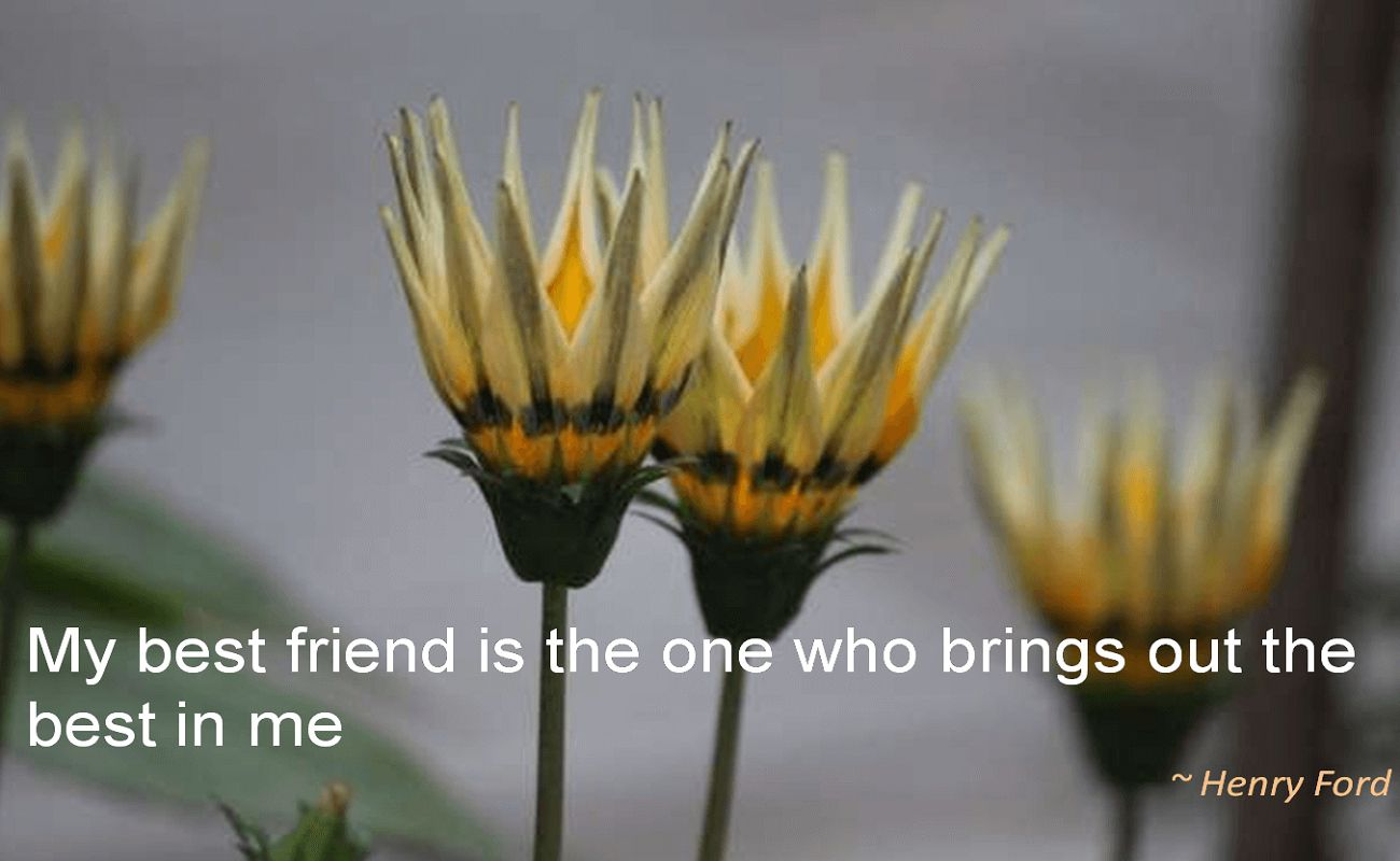 Henry Ford- My best friend is the one who brings out the best in me