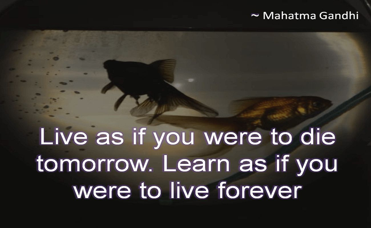 Mahatma Gandhi- Live as if you were to die tomorrow. Learn as if you were to live forever
