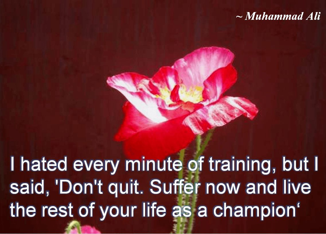 Muhammad Ali- I hated every minute of training, but I said, 'Don't quit. Suffer now and live the rest of your life as a champion