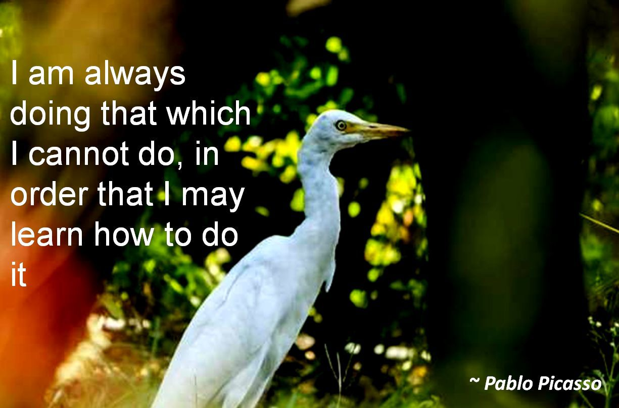 Pablo Picasso- I am always doing that which I cannot do, in order that I may learn how to do it