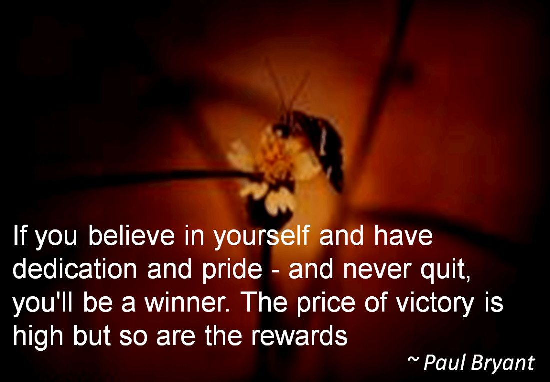 Paul Bryant- If you believe in yourself and have dedication and pride - and never quit, you'll be a winner. The price of victory is high but so are the rewards