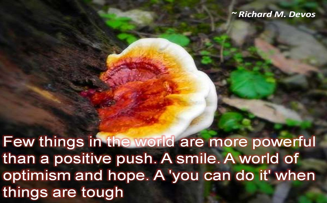 Richard M. Devos- Few things in the world are more powerful than a positive push. A smile. A world of optimism and hope. A 'you can do it' when things are tough