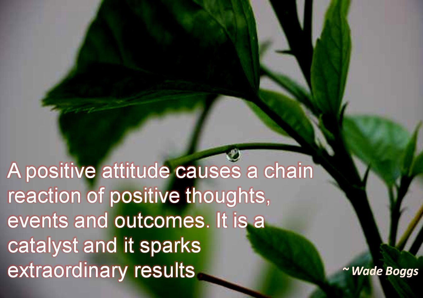 Wade Boggs- A positive attitude causes a chain reaction of positive thoughts, events and outcomes. It is a catalyst and it sparks extraordinary results
