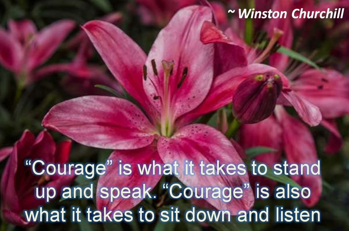 winston churchill courage is what it takes to stand up and speak courage is