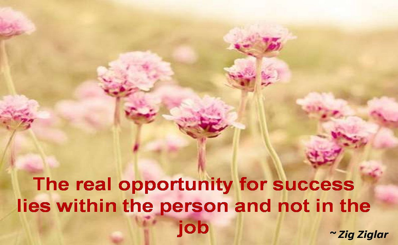 Zig Ziglar- The real opportunity for success lies within the person and not in the job