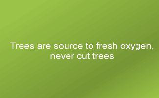 Trees are source to fresh oxygen, never cut trees