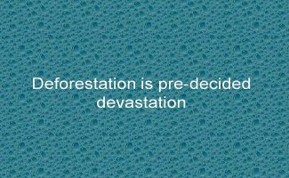 Deforestation is pre-decided devastation