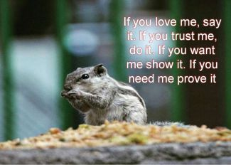 Anonymous- If you love me, say it. If you trust me, do it. If you want me show it. If you need me prove it