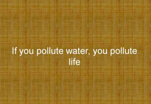 If you pollute water, you pollute life