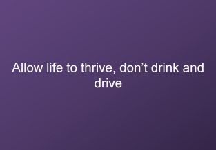 Allow life to thrive, dont drink and drive