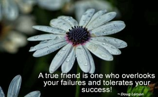 Doug Larson- A true friend is one who overlooks your failures and tolerates your success!