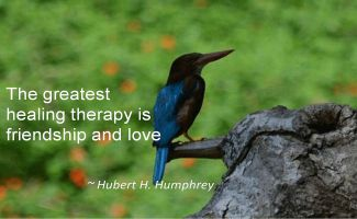 Hubert H. Humphrey- The greatest healing therapy is friendship and love