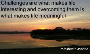 Joshua J. Marine - Challenges are what makes life interesting and overcoming them is what makes life meaningful