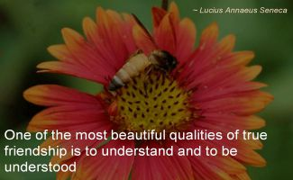Lucius Annaeus Seneca- One of the most beautiful qualities of true friendship is to understand and to be understood