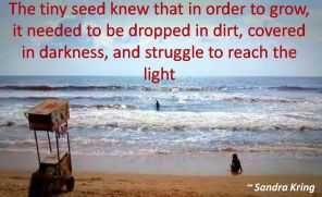 Sandra Kring- The tiny seed knew that in order to grow, it needed to be dropped in dirt, covered in darkness, and struggle to reach the light