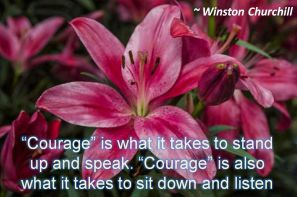 Winston Churchill- Courage is what it takes to stand up and speak. Courage is also what it takes to sit down and listen